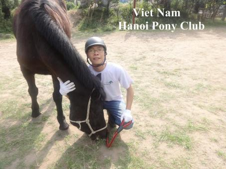 Need investors for business about Riding Horse School at Hanoi Capital, Vietnam Country