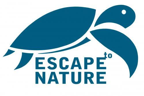 Escape to Pacific